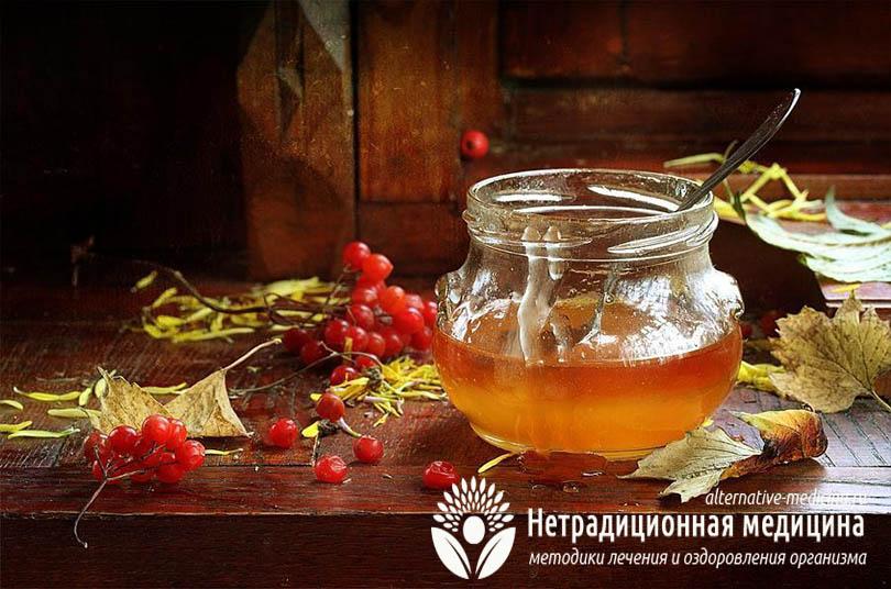 Калина с медом от кашля