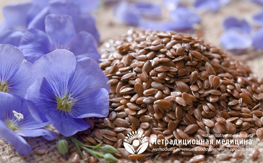 Как правильно заваривать семена льна?