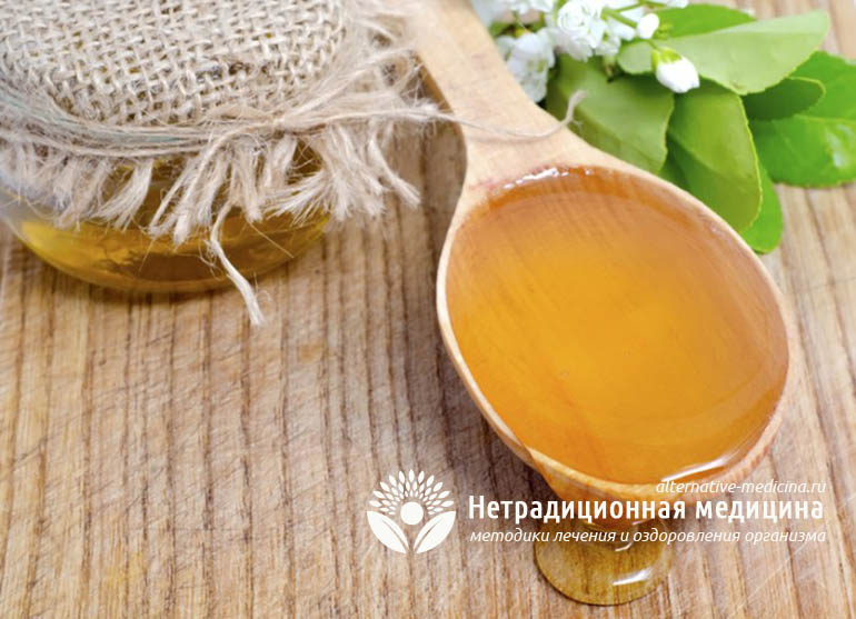 Чем полезен донниковый мед