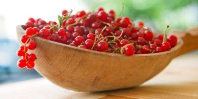Миниатюра к статье Невероятная польза красной смородины и рецепты ее применения