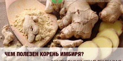 Миниатюра к статье Имбирь — полезные свойства и рецепты применения имбирного корня