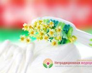 Миниатюра к статье Лечебные травы для зубов и десен - полезные рецепты фитотерапии