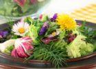Миниатюра к статье Что приготовить из первой зелени — вкусные рецепты из сорняков