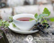 Миниатюра к статье Чай из черной смородины - полезные свойства и рецепты приготовления