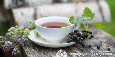 Миниатюра к статье Чай из черной смородины — полезные свойства и рецепты приготовления