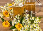 Миниатюра к статье Чай с ромашкой — полезные свойства  и секреты эффективного применения