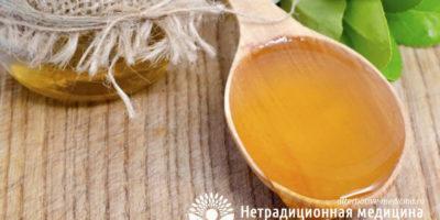 Миниатюра к статье Донниковый мед — полезные свойства и важные особенности