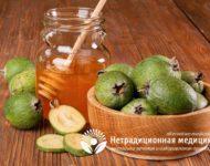 Миниатюра к статье Чем полезен экзотический фрукт фейхоа  - секреты применения плодов