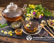 Миниатюра к статье Фитотерапия - все про особенности лечения лекарственными растениями