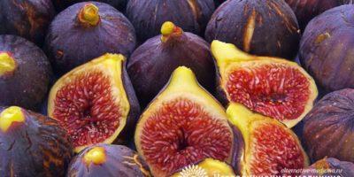 Миниатюра к статье Инжир — полезные свойства и секреты применения вкусных плодов