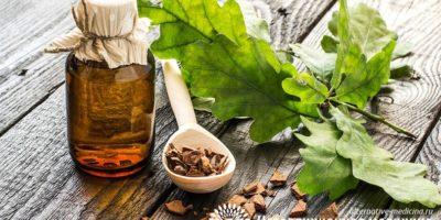 Миниатюра к статье Кора дуба для полости рта — полезные свойства и эффективные рецепты применения