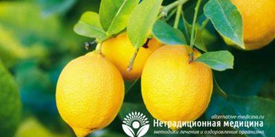 Миниатюра к статье Чем полезен лимон для нашего организма — секреты употребления