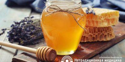 Миниатюра к статье Состав и полезные свойства пчелиного меда — секреты апитерапии
