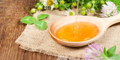 Миниатюра к статье Цветочный мед —  полезные свойства и секреты применения в медицине