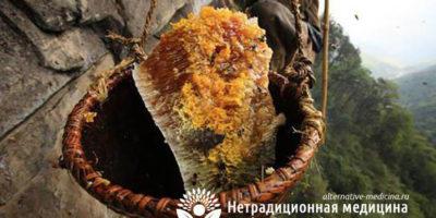 Миниатюра к статье Горный мед — уникальные целебные свойства и особенности употребления
