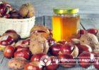 Миниатюра к статье Каштановый мед и его исключительная польза для человека