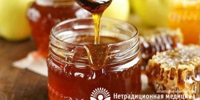 Миниатюра к статье Гречишный мед — чем полезен этот вкуснейший продукт пчеловодства