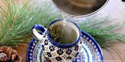 Миниатюра к статье Витаминные напитки из сосновых иголок — рецепты приготовления