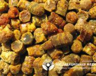 Миниатюра к статье Перга - уникальные свойства пчелиного хлеба для нашего здоровья