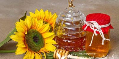 Миниатюра к статье Подсолнечный мед — все про пользу этого продукта пчеловодства в одной статье