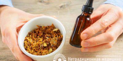 Миниатюра к статье Как принимать настойку прополиса для лечения кашля — секреты апитерапии