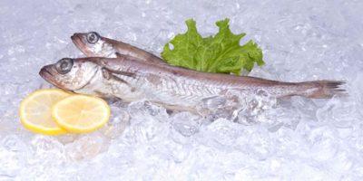 Миниатюра к статье Чем полезна рыба путассу и как ее правильно готовить?