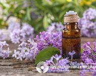 Миниатюра к статье Сирень  - ароматное растение для лечения болезней суставов