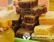 Миниатюра к статье Мед в сотах - в чем польза этого уникального продукта пчеловодства?
