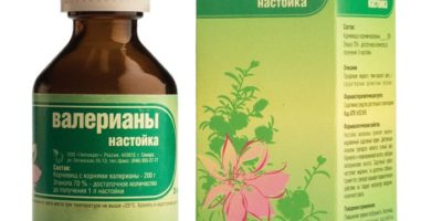 Миниатюра к статье Настойка валерианы — лечебные свойства  и показания к применению