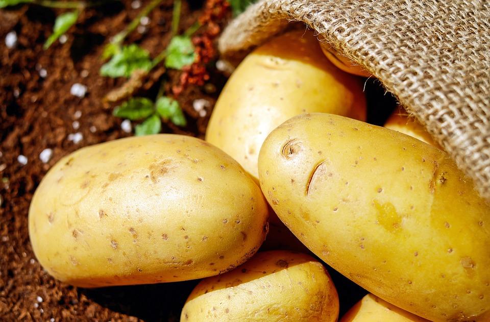 Чем полезен картофель для организма человека?