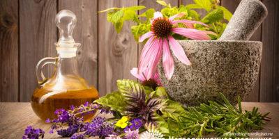 Миниатюра к статье Целебное масло зверобоя – секреты эффективного применения