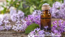 Миниатюра к статье Сирень  – ароматное растение для лечения болезней суставов