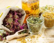 Миниатюра к статье Какие травы помогают при цистите - эффективные рецепты фитотерапии