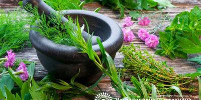 Миниатюра к статье Аюрведа – индийская система оздоровления организма и долголетия