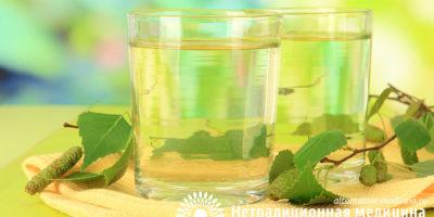 Миниатюра к статье Березовый сок – уникальные свойства  и способы получения природного напитка