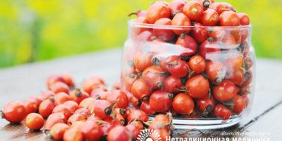 Миниатюра к статье Чай из шиповника – самые вкусные и полезные рецепты приготовления