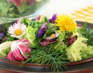 Миниатюра к статье Что приготовить из первой зелени - вкусные рецепты из сорняков