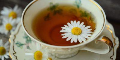 Миниатюра к статье Чай с ромашкой – полезные свойства  и секреты эффективного применения