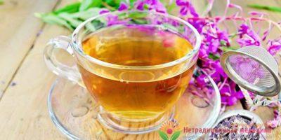 Миниатюра к статье Целебный иван-чай – как правильно заготавливать, заваривать и пить?