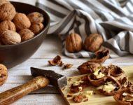 Миниатюра к статье Целебные перегородки грецких орехов - полезный рецепт настойки и ее применение
